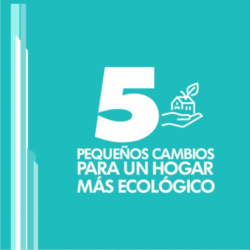 5 PEQUEÑOS CAMBIOS PARA UN HOGAR MÁS ECOLÓGICO