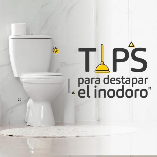 TIPS PARA DESTAPAR EL INODORO