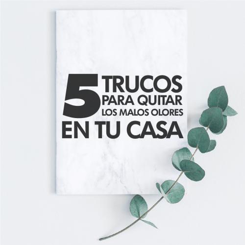 5 TRUCOS PARA QUITAR MALOS OLORES EN TU CASA